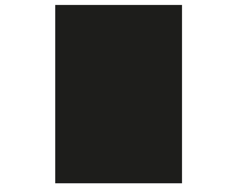 Illustrator gravure tortue