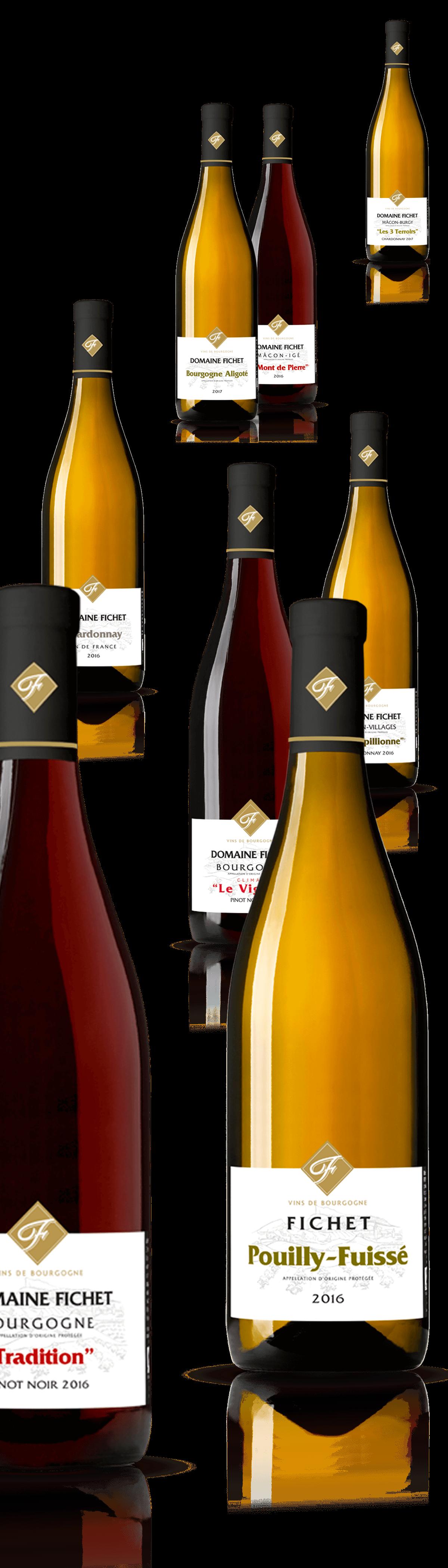 Création d'étiquettes vin blanc, rouge