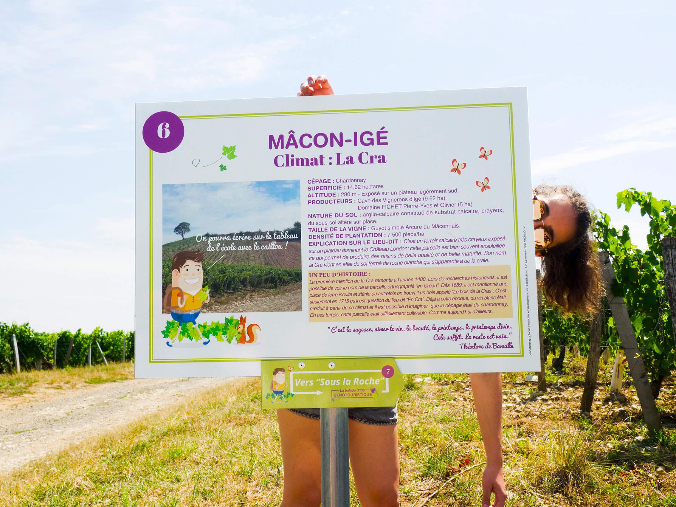 """Panneau explicatif sur le vin provenant du climat """"La Cra"""""""