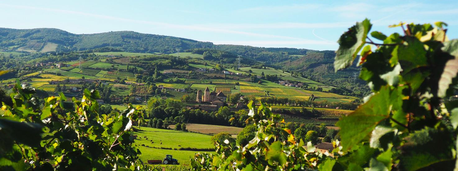 vue de Pierreclos dans les vignes des Vins Lapalus