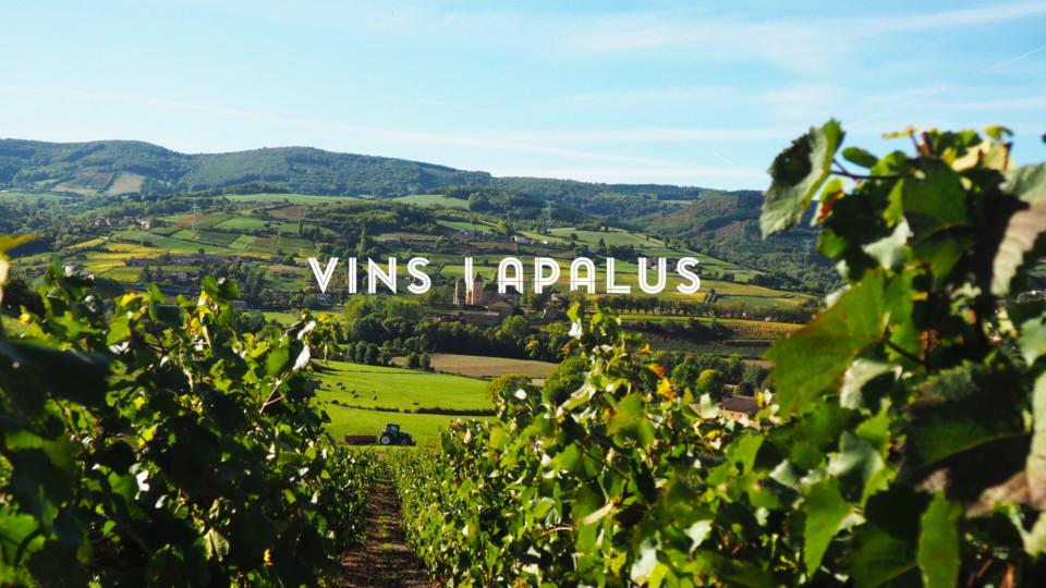 Présentation les Vins Lapalus